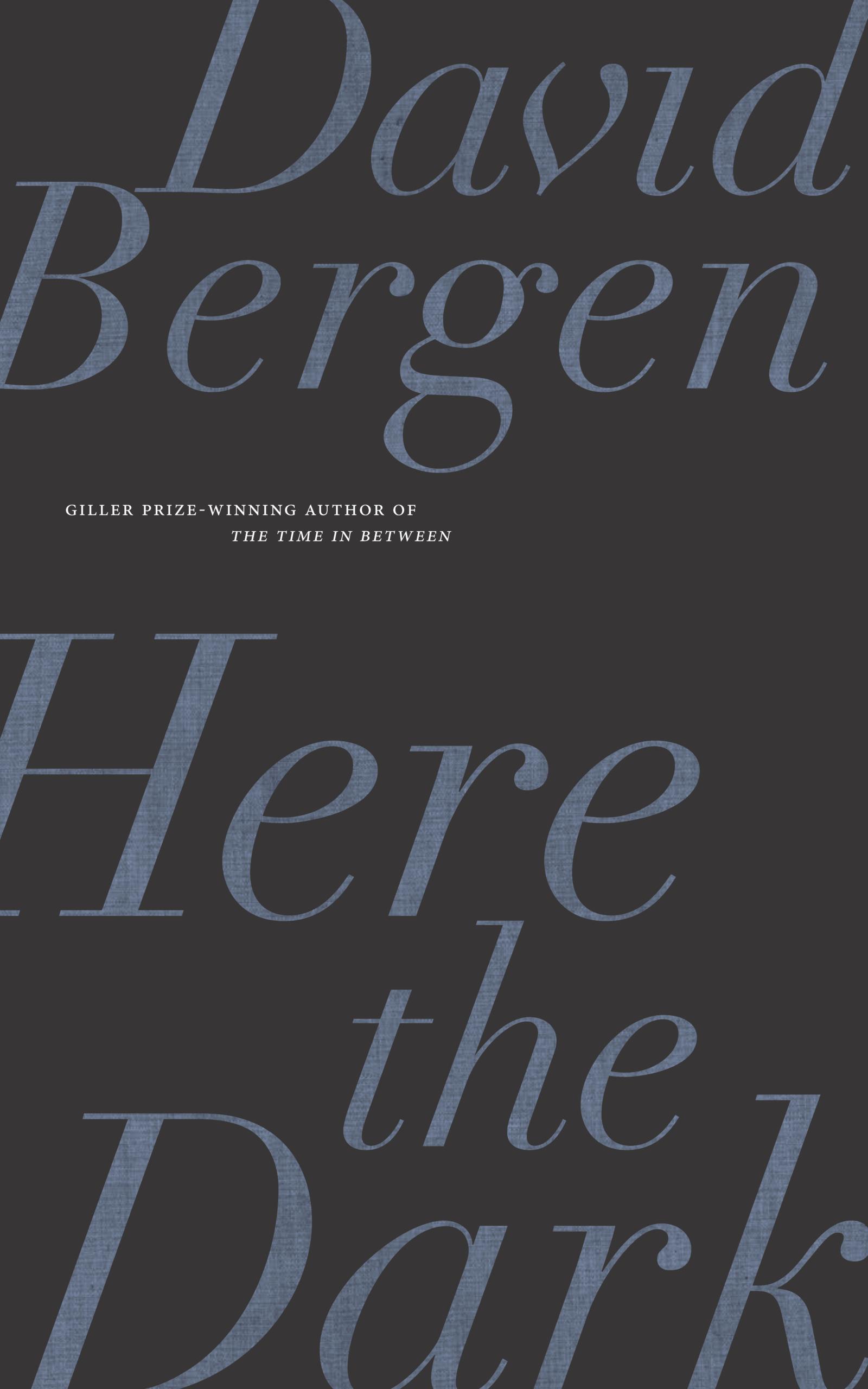 BergenDavid Here the Dark BookCover